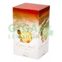 Čaj Zimní punč 40g 20x2g Biogena