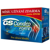 GS Condro Forte 120+60 tablet