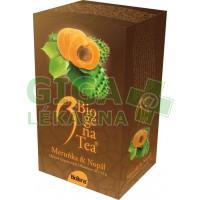 Čaj Biogena Tea Meruňka-Nopál 20x2.5g