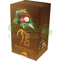 Čaj Biogena Tea Moruše-Mangostan 20x2.5g