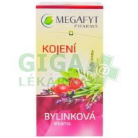 Megafyt Bylinková lékárna Kojení n.s.20x1.5g