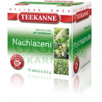 TEEKANNE Nachlazení bylinný čaj n.s.10x2.3g