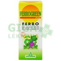 Ferrogreen 170ml