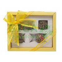 Oxalis Artemis žlutá set kvet. čajů