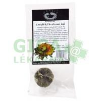 Oxalis Tropický kvetoucí čaj 1ks