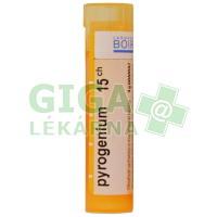 Pyrogenium CH15 gra.4g