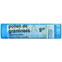 Pollen De Graminees CH9 4g