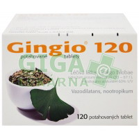 Gingio 120mg 120 tablet