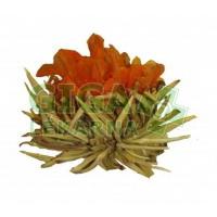 Kvetoucí čaj Květ harmonie