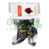 Kvetoucí čaj Meloun