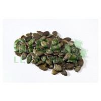 Lifefood Dýňové semínko BIO 1kg
