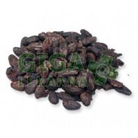 Lifefood Raw nepražené kakaové boby BIO 1kg