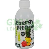 ENERGY FIT DRINK se zel.ječmenem+ananasem+guar.
