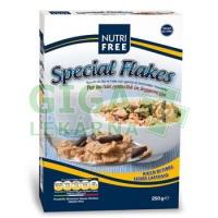 Allexx Cornflakes ryžové + čokol.hoblinky 250g