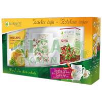 Megafyt Kolekce čajů + hrnek HLOH 110g