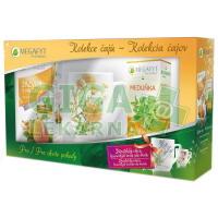 Megafyt Kolekce čajů + hrnek MĚSÍČEK 70g
