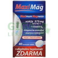 Zdrovit MaxiMag 2 x šum. tbl + digit.teplom.zdarma  2x20tbl