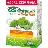 GS Ginkgo 40 + Gotu kola 80+40 tablet