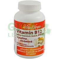 Vitamín B12 rozp.v ústech 250mcg tbl.60 -VitaZdrav