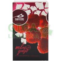 Santée čaj Malina - Ginkgo n.s. 20x2.5g