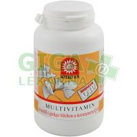 Multivitamin-minerál s ginkgo bilob.+koenz.Q10 tbl.100