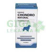 Roboran Chondro Natural pro psy 100 tbl