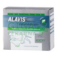 Alavis Enzymoterapie 80 kapslí