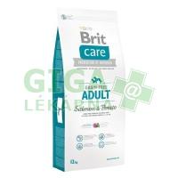 Brit Care Grain Free Dog Adult Salmon & Potato 12kg