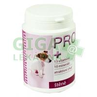 Fitmin PRO multivitamín štěně 150 g