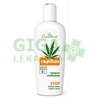Cannaderm Capillus šampon s kofeinem 150ml