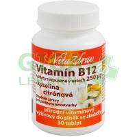 Vitamín B12 rozp.v ústech 250mcg tbl.30 -VitaZdrav