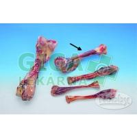 Kost masová vákuově balená Nobby 17cm