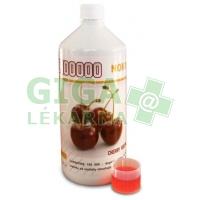 Carnitine 100000 cherry 1000ml