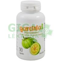 Garcinia Cambogia 90 kapslí