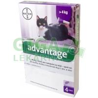 Advantage spot on kočka a.u.v. 4kg a více - 4x0,8ml