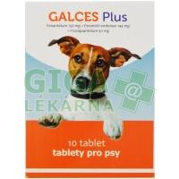 Galces Plus 10tbl