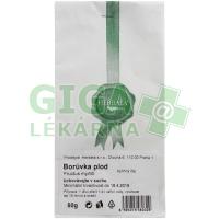 Herbata Plod borůvky 50g