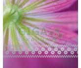 Obrázek Přání UNICEF Květinové portréty 5x2ks