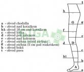 Obrázek Avicenum 140 punčocháče M LONG (2D) velký klín tělové