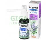 Obrázek Anginal ústní sprej se šalvějí 30ml