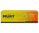 Thajský krém Namman Muay 30g