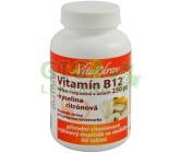 Vitamín B12 rozp.v ústech 250mcg tbl.60