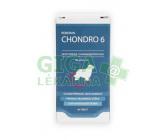 Roboran Chondro 6 pro psy 60 tbl