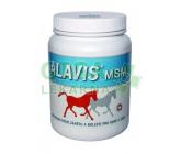 Alavis MSM pro koně 600g