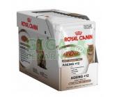 Obrázek Royal Canin - Feline kaps. Ageing +12 v želé 85g
