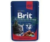 Brit Premium Cat kaps. - Cod Fish 100g