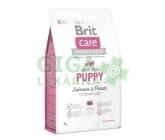 Brit Care Grain Free Dog Puppy Salmon & Potato 3kg