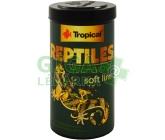 Tropical Reptiles Herbivore býložravci