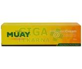 Thajský krém Namman Muay 100g