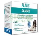 ALAVIS Sammy tbl.30
